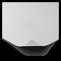 canvas2